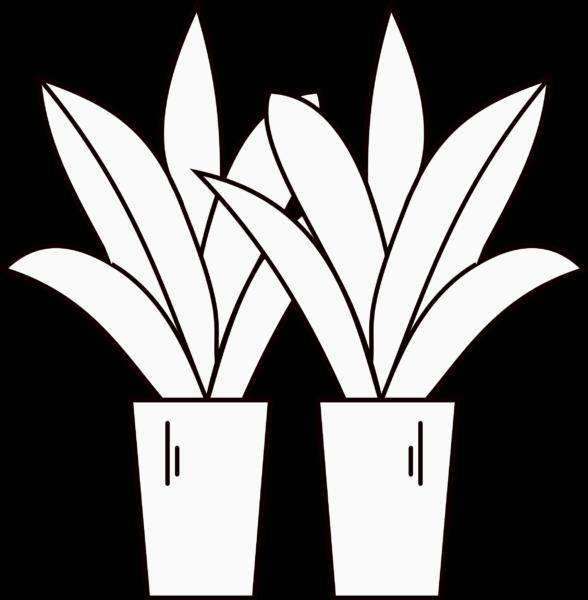 2 Plant Icon