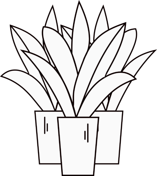3 Plant Icon